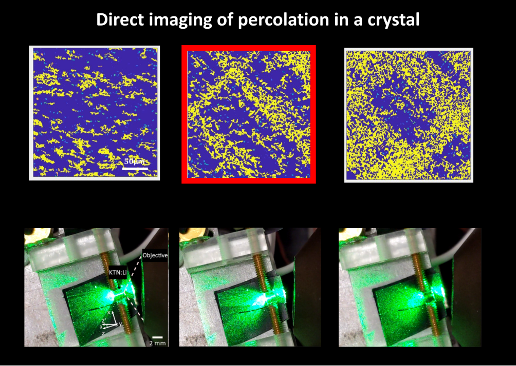 percolazione frattale cristallo